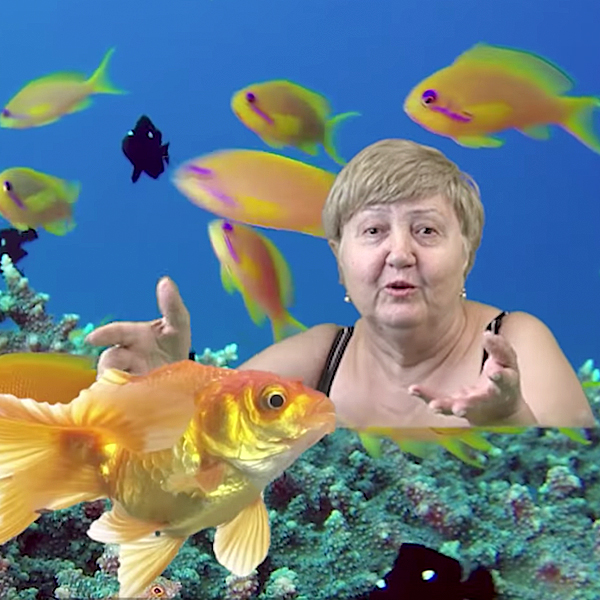 IGLO – Green Screen Granny
